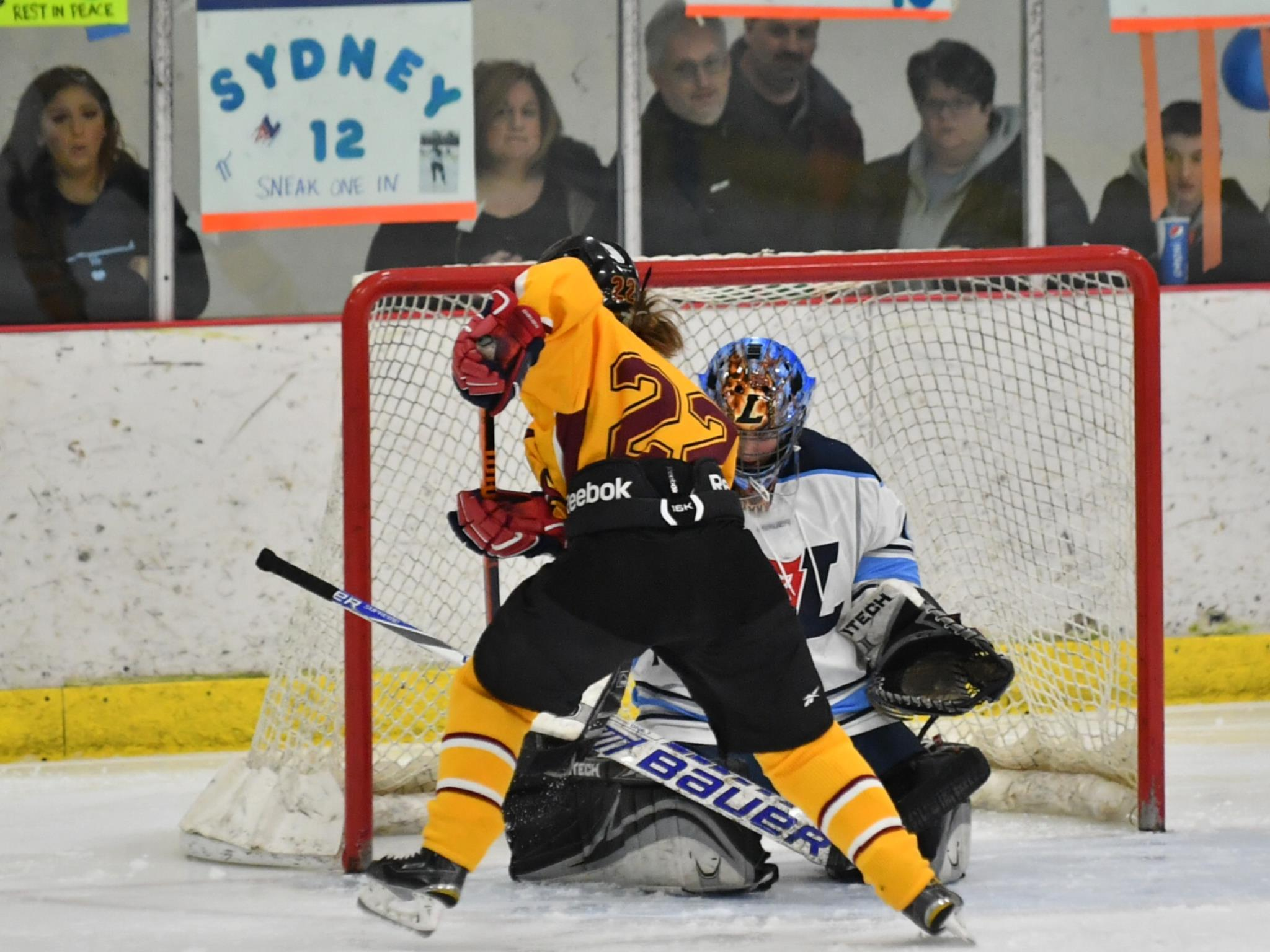 Senior Hannah Roegner goes in for a goal against Ladywood at the ice hockey state finals on Saturday. (Photo Credit: Mercy Varsity Hockey)