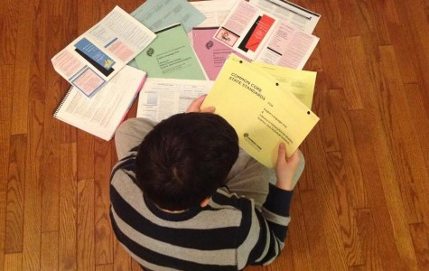 The Common Core's educational standards have been adopted by most of the country, but their emphasis on test scores and standardization is corrupting the true goals of education.
