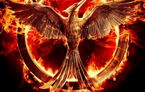 Mockingjay Part 1 merely meets expectations