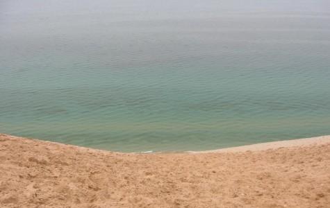Lake Michigan: a man-made ecosystem