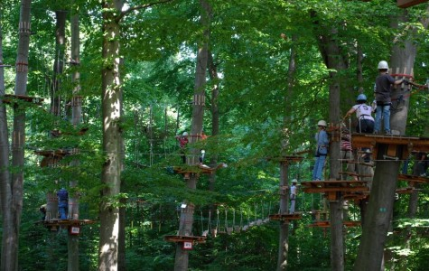 Like to climb trees? Try The Adventure Park at West Bloomfield