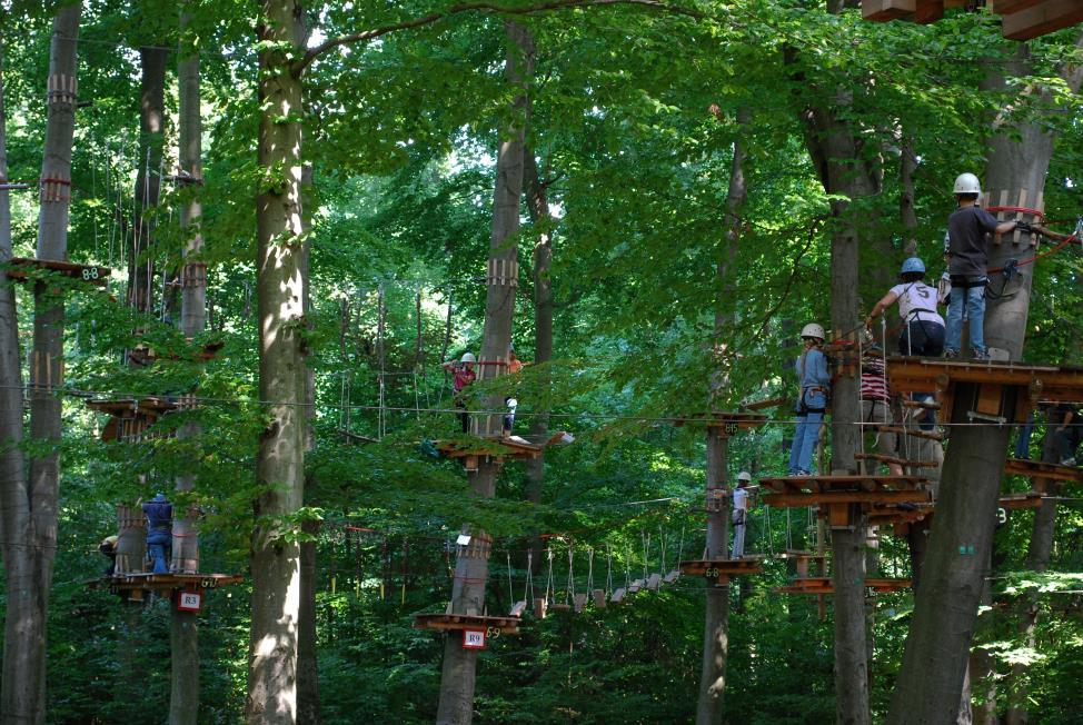 The Adventure Park at West Bloomfield is a fantastic way to spend the day and get some physical activity. The park offers something for everyone to enjoy, no matter their age-level or skill (Photo credit: Fair Use).
