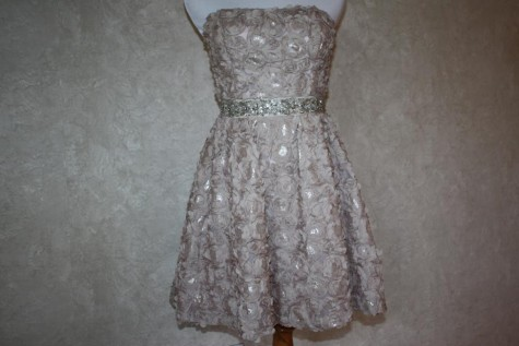 This dress displays the trend of appliqués through its sequined flowers and sparkly belt. (Photo credit: Sydney Hughes)