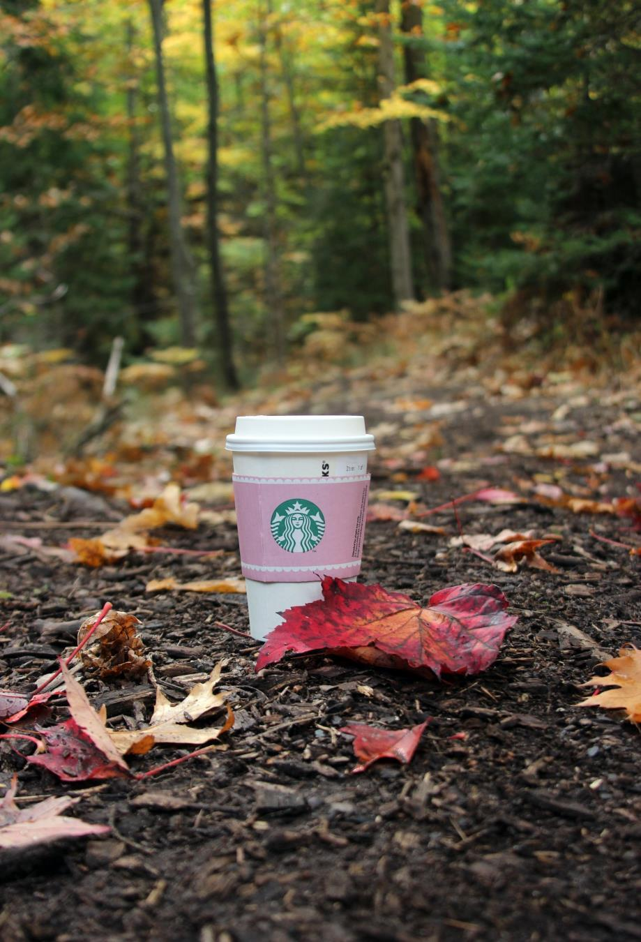 With the fall season comes Starbucks' line of seasonal drinks, including their signature Pumpkin Spice Latte which hit the stores on Sept. 8. (Photo credit: MCT Wire Service)