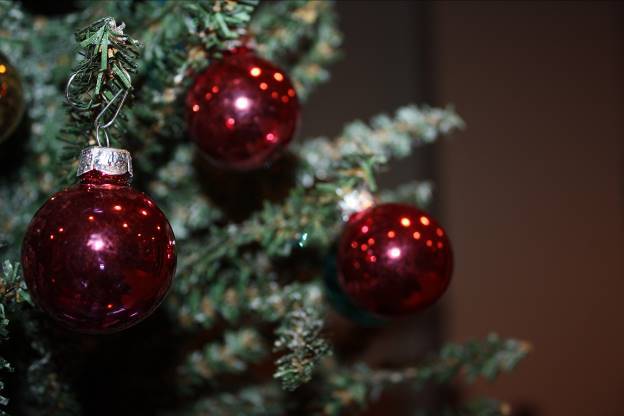 The question of if it's too soon to start the Christmas traditions and holiday preparations before the calendar turns to Decembers sparks a debate amongst many people. (Photo credit: Sydney Hughes)