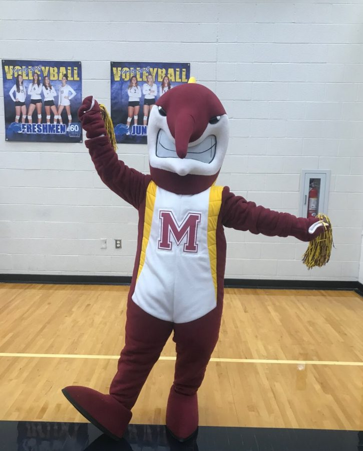 The Mercy Marlin shows its school spirit with its maroon and gold pom poms at a volleyball game against Marian High School.  Photo used with permission from Hannah O'Sullivan